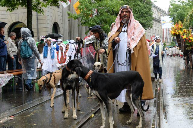 Beduinen und Windhunde