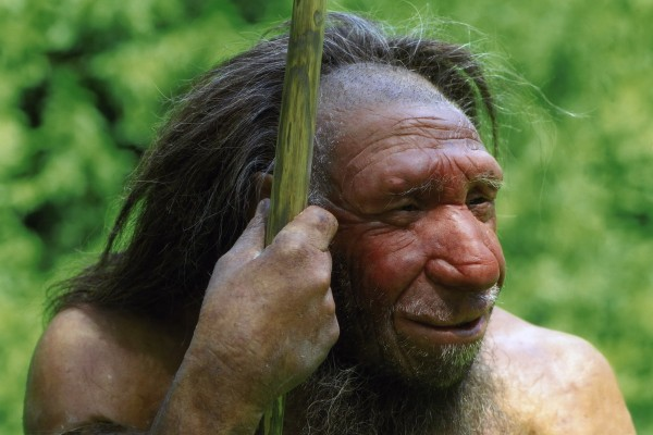Neanderthaler_4